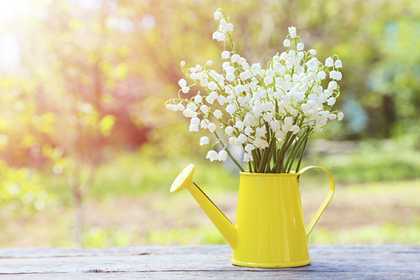 Thumbnail sfat: Mesaje de Florii - Idei pentru urări pe care să le trimiți prietenilor sau r...