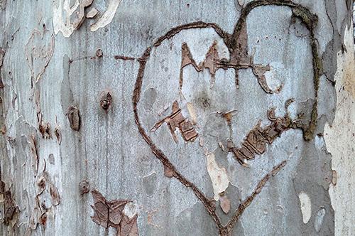 Dragobetele sărută fetele - de unde a apărut această expresie