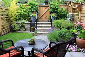Imagine sfat: Creați un mozaic din pietre pentru aleea grădinii