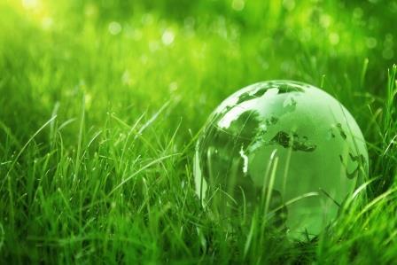 2.Protejezi mediul înconjurător