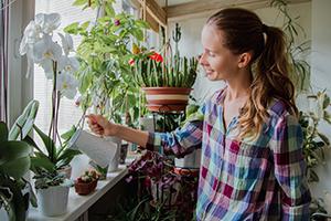 Imagine sfat: Care este rolul florilor de apartament și care sunt cele mai potrivite specii de plante pentru apartament