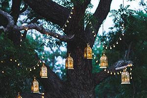 Imagine sfat: Iluminați-vă grădina într-un mod feeric